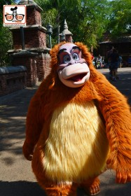 DNP April 2016 Photo Report: Animal Kingdom: