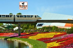 DNP April 2016 Photo Report: Epcot Flower and Garden Festival. Festival Blooms and a Monorail