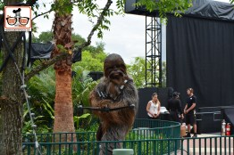 "DNP April 2016 Photo Report: Hollywood Studios: Chewy prepares to enter the stage for the ""Galaxy Far, Far away stage show."""
