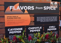 Flavors from Fire - New for 2017 - is part of the Future World West