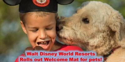 The Disney Nerds Podcast - Pets Welcome at Select Resorts