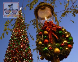 The Disneyland Christmas Tree in Town Square