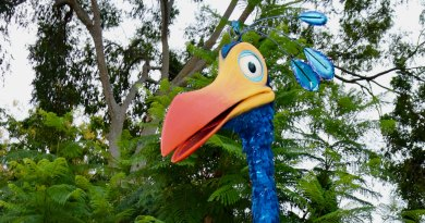 Kevin is coming to Animal Kingdom