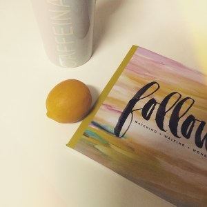 Follow devotional by Naptime Diaries