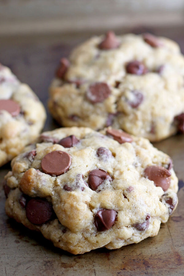 Oat Chocolate Chip Cookie