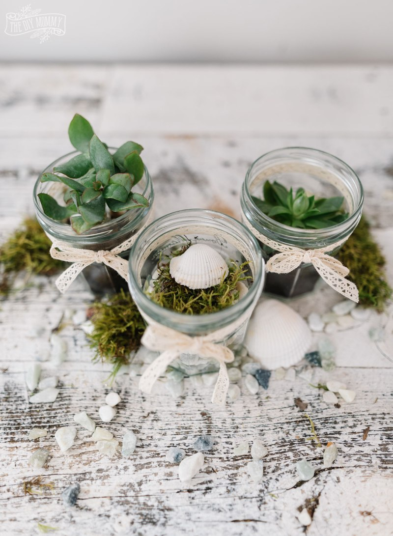 Upcycle jam jars into tiny terrariums with items you find around the house.