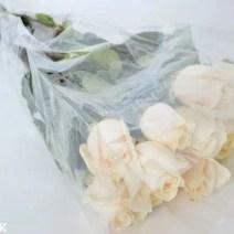 rp_Long-stemmed-white-roses.JPG