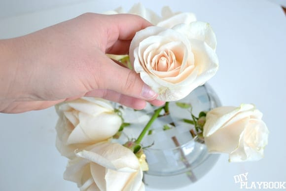 arranging roses in a bowl