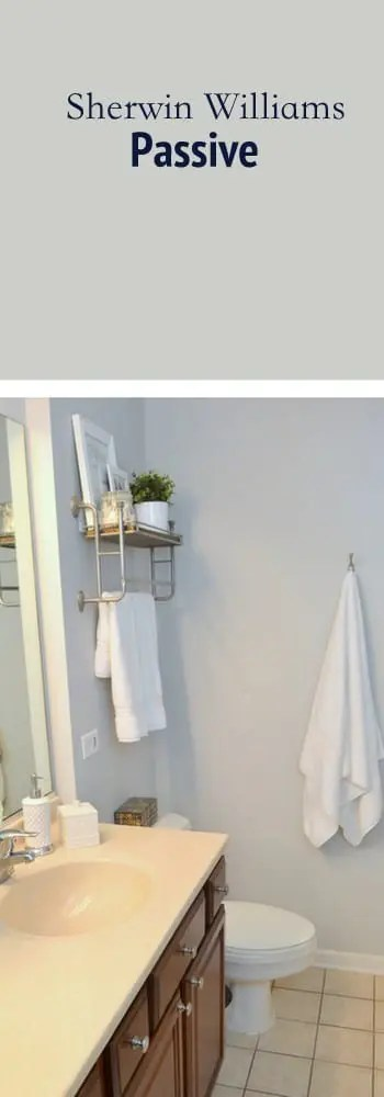 paint color bathroom