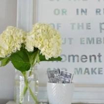 White-Hydrangeas