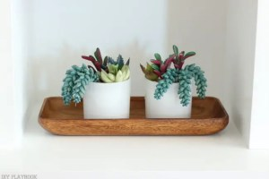 SucculentMaggie Built in Shelves