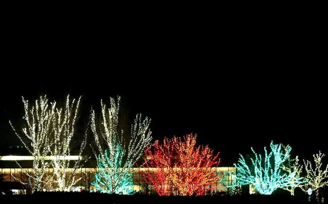 Morton Arboretum Christmas Lights