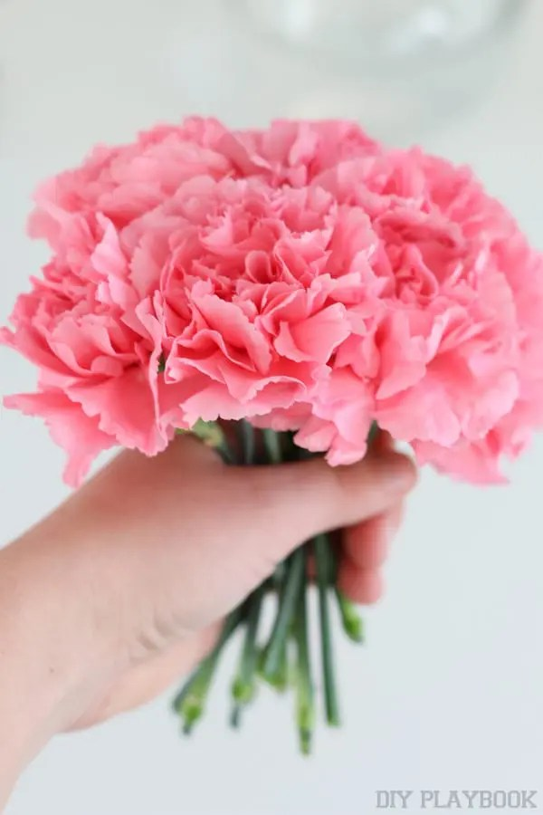 4-carnations-bunch-flowers