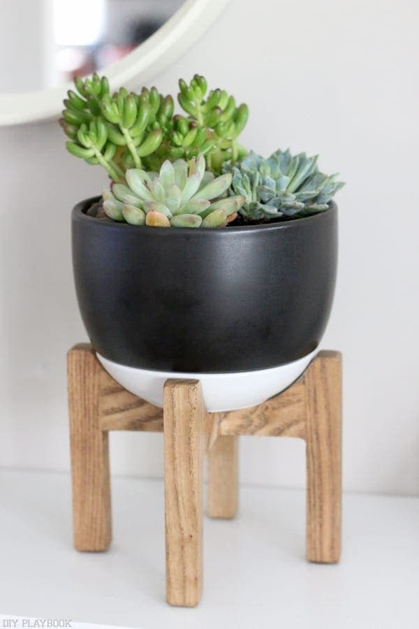 succulent_target_stand_plant