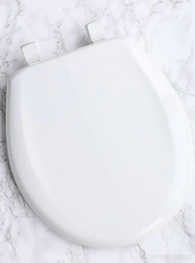 toilet-seat-new