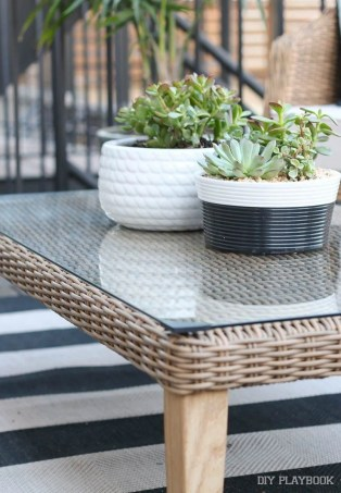 succulents-plants-patio