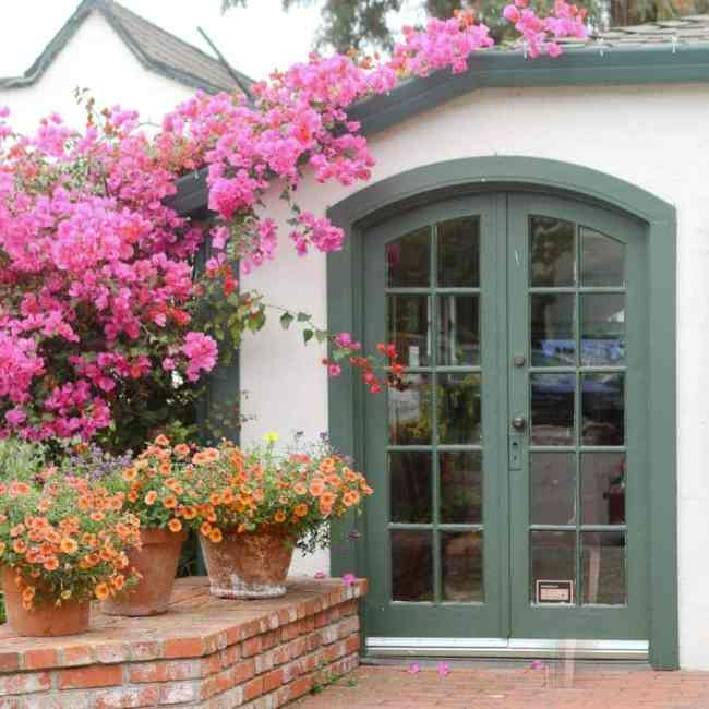 travel-carmel-door-flowers