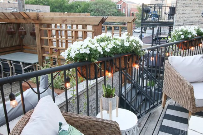 flower-boxes-outside-patio