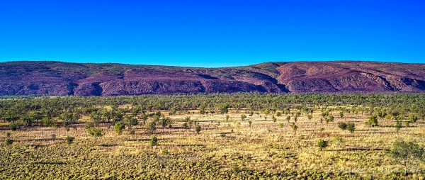 Kimberley Mornington Pentax 2015 - 0147-Pano