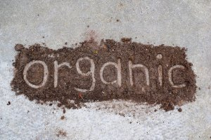 the word organic written in dirt