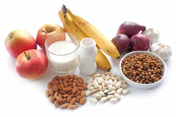 Prebiotic and probiotic foods