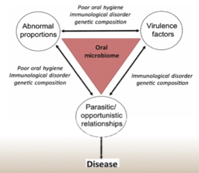Oral microbiome - oral diseases 718 x 626