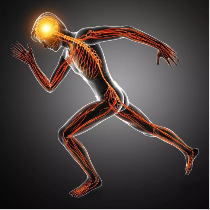 human running with brain lit up graphic 1024 x 1024