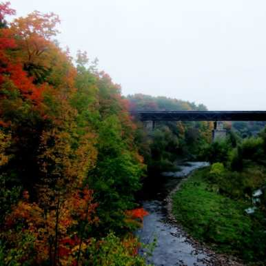autumn leaves and railroad bridge