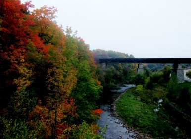 autumn leaves and railroad bridge
