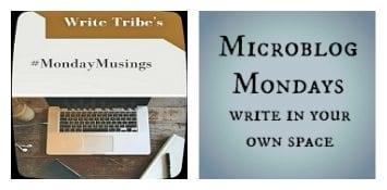 #MondayMusings + #MiroblogMondays