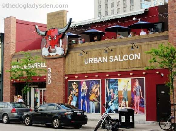 Lots of great bars and restaurants!
