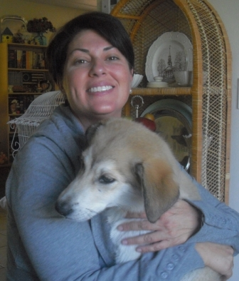 Juneau the Husky Puppy ~ Adopted