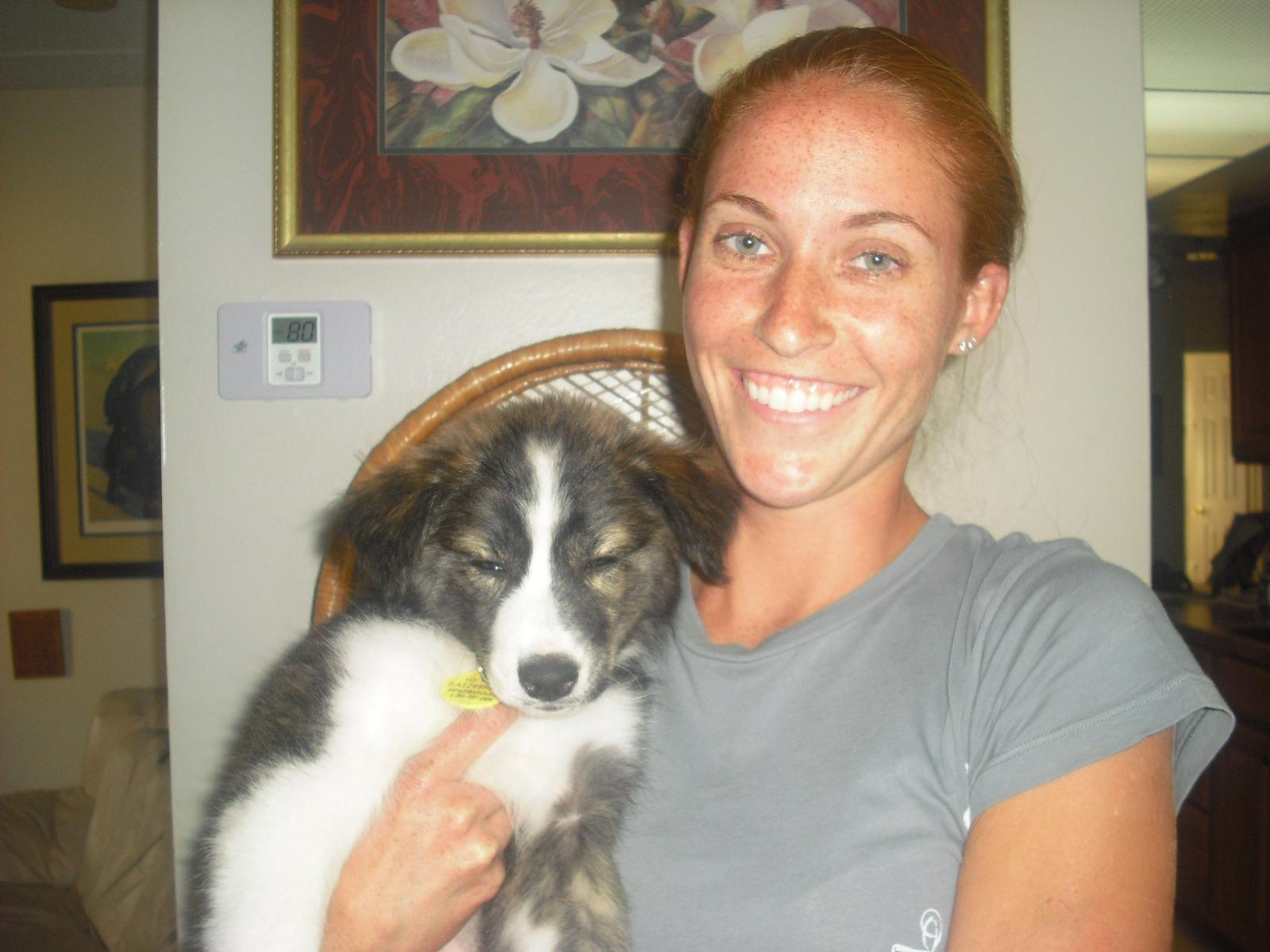Fergie the Aussie ~ Adopted