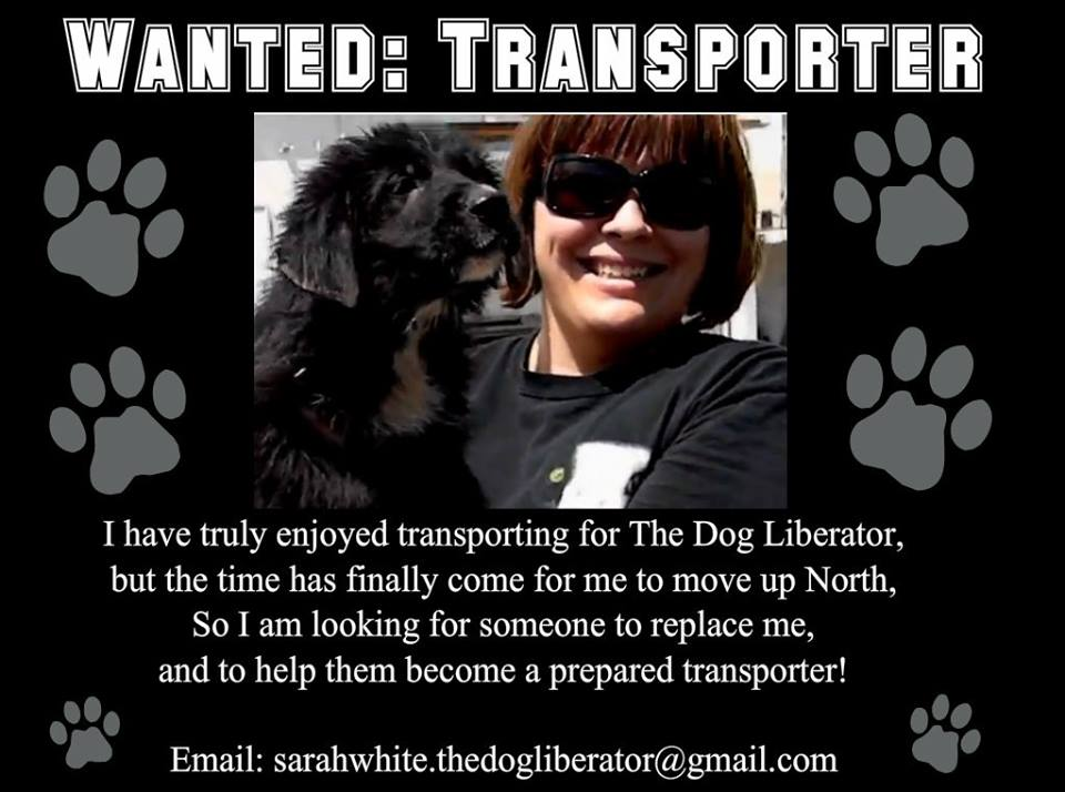 Wanted – Transporter