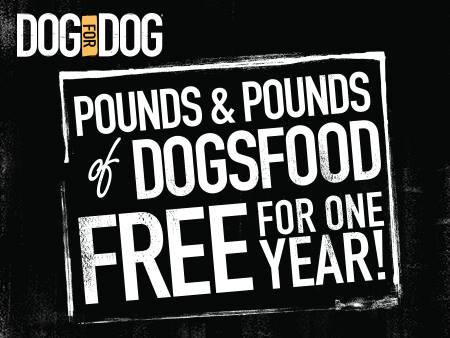DogForDog Contest