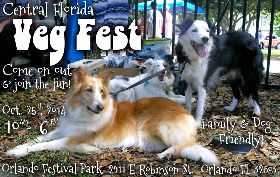 Meet The Dog Liberator at the Central Florida Vegan Fest 2014