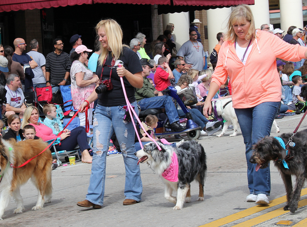 The 2017 Mardi Gras Dog Parade in Downtown DeLand