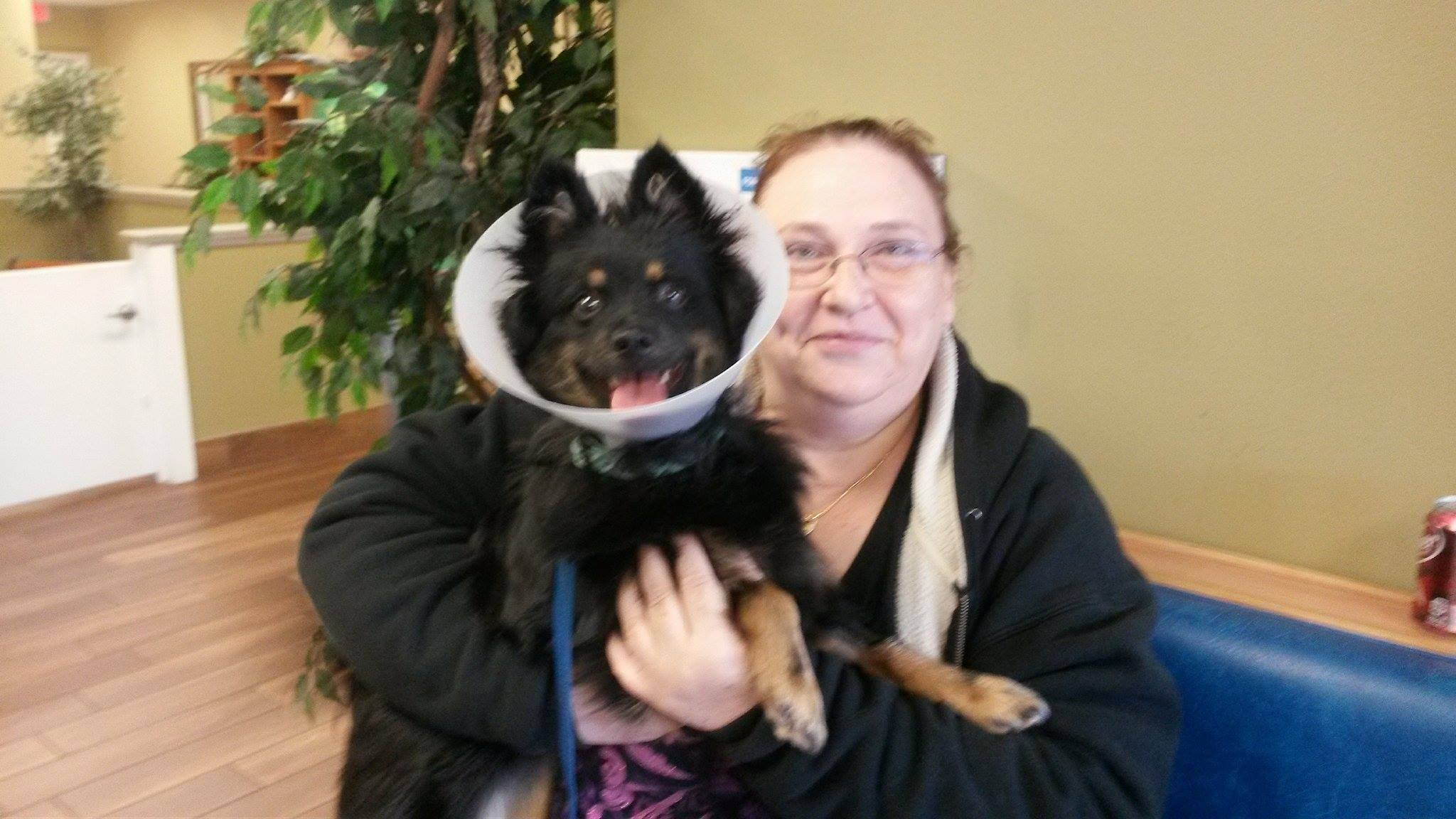 Demi Moore ~ Adopted!