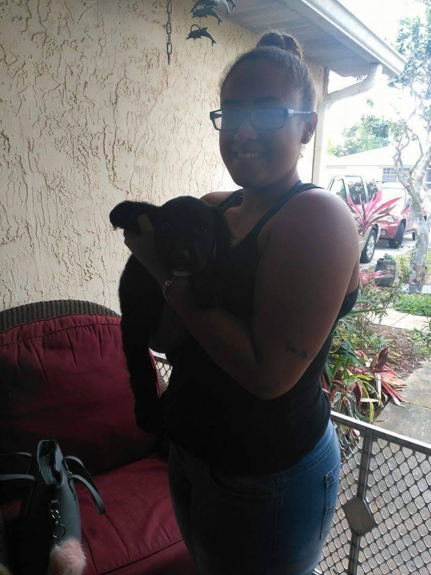 Corki ~ Adopted!