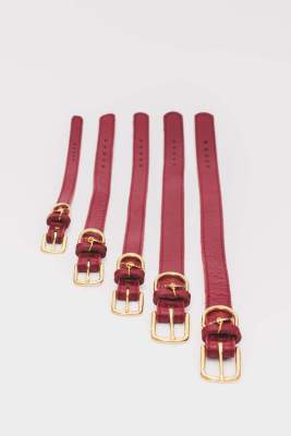 The Dog Musthaves - Collar Burgundy All sizes