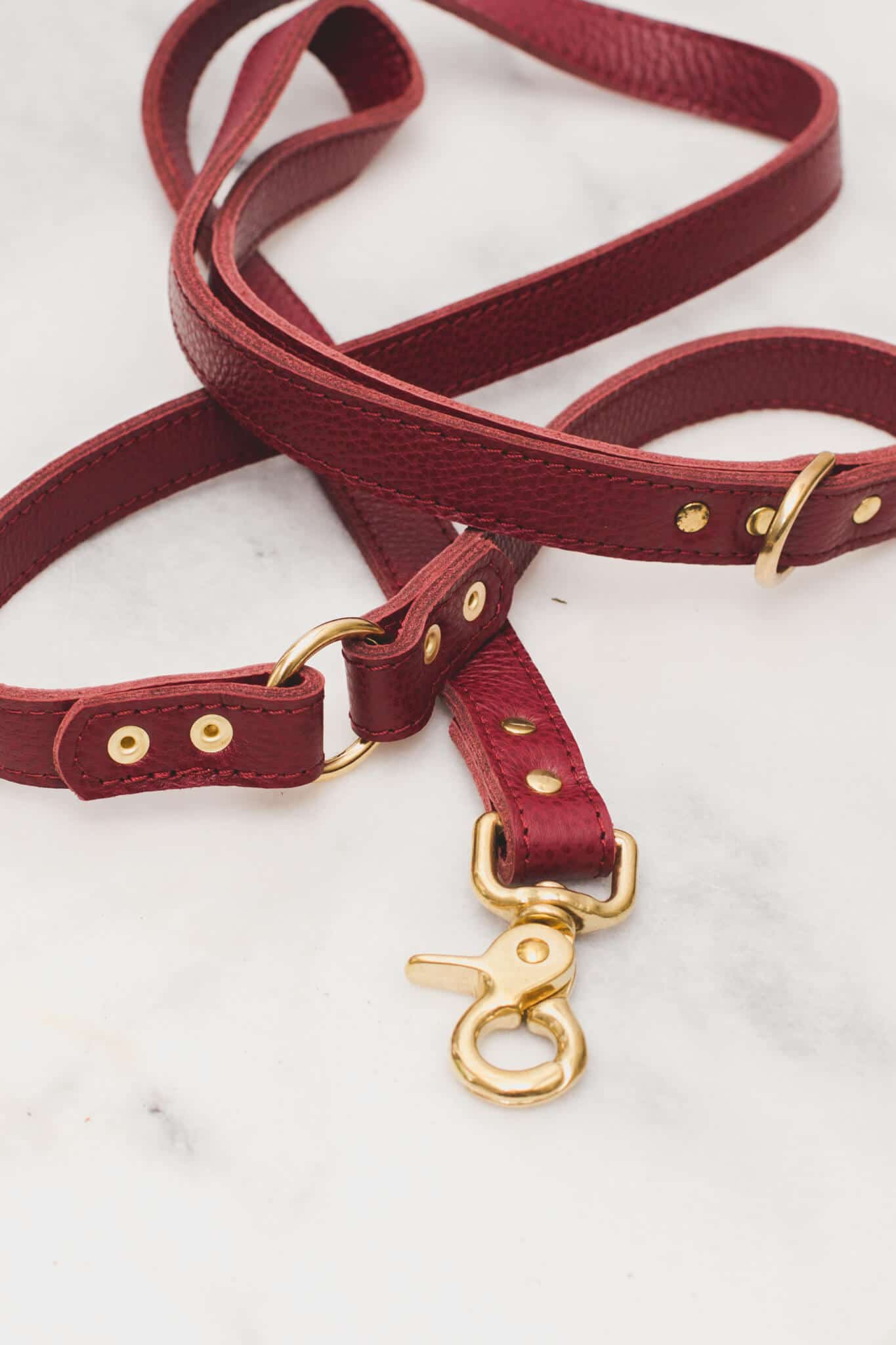 The Dog Musthaves - Leash Burgundy Detail