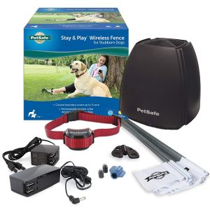 PetSafe Stay and Play Wireless Fence