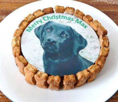 Christmas Gifts for Dogs - Christmas Cake for Dogs