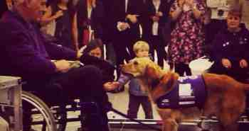 Canine Partners Dogs at Canary Wharf