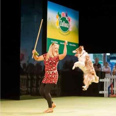 The London Pet Show - Dog Displays