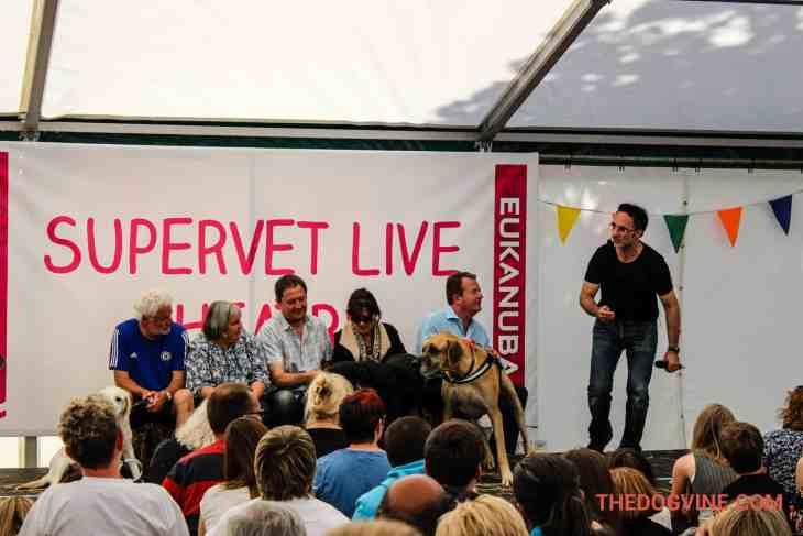 The Supervet DogFest 2015