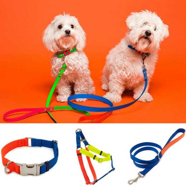 Leadthewalk.com  - Ware of The Dog Collars & Leads