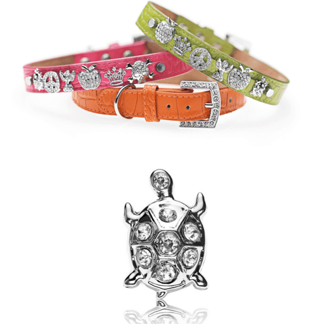 Leadthewalk.com - Voss By Voss Charm Collars