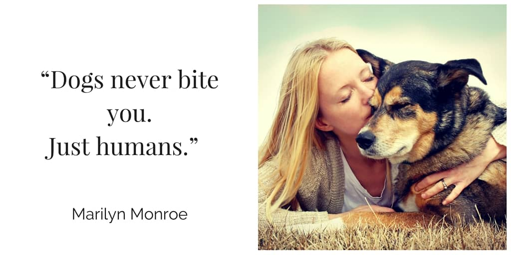 Canine & Companions Exhibition - Marilyn Monroe quote