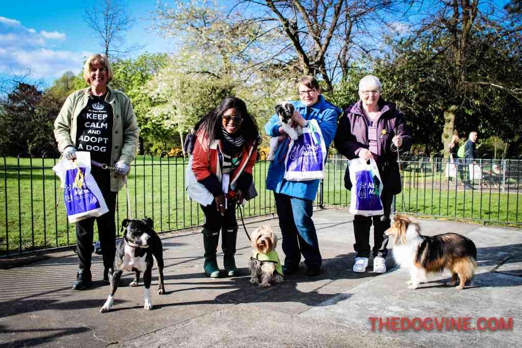 Potluck Class - Dog Factor 2016